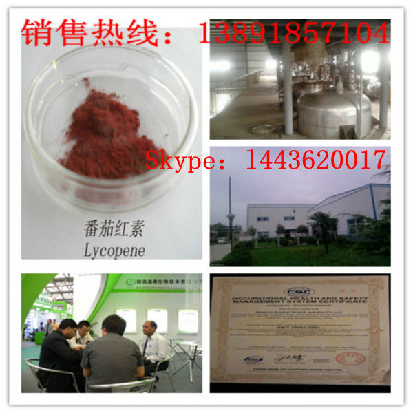 100% Natural Tomato Lycopene Competitive price No Irradiation Low Solvent Residue