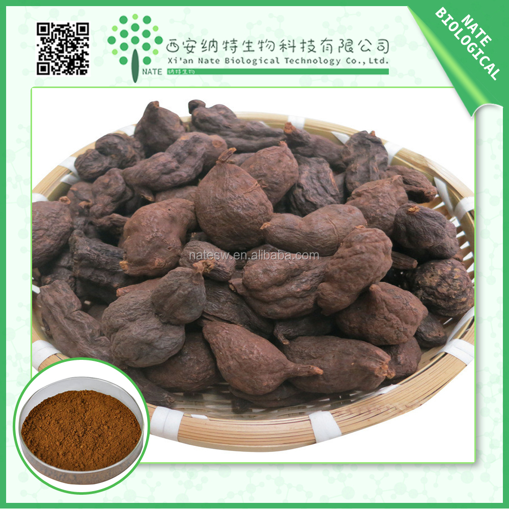 Prepared Fo-ti Extract/ He Shou Wu / Polygonum 10:1 Extract Powder, High Quality