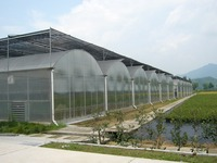 clear plastic polycarbonate sheet waterproof greenhouse
