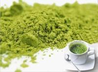 Green Tea Extract GTP Matcha for Slimming