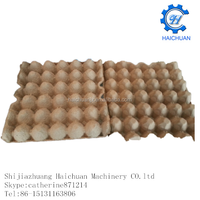 direct factory for 30 pcs Paper Tray for Packing Egg