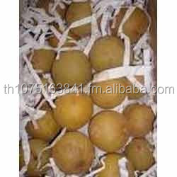 Fresh Chikoo for sale