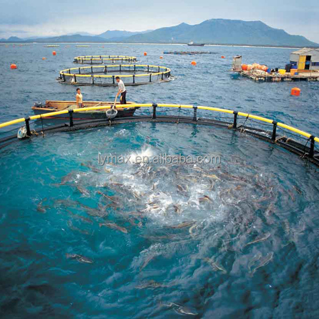 Circle floating aquaculture fish farming cages