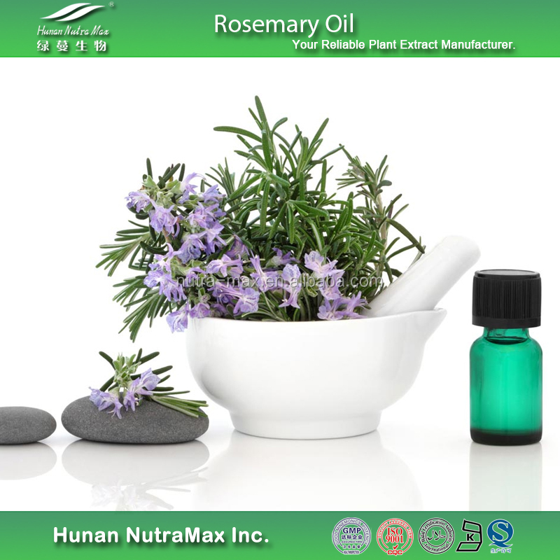 Natural Rosemary Oil Price, Rosemary Essential Oil, Rosemary Oil