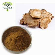Pure Natural Doubleteeth Angelica Root Extract Powder