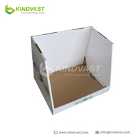 cardboard countertop display case