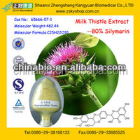 GMP Factory supply Water Soluble Milk Thistle Extract