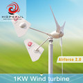 1kw 48V off-grid twin tails patent wind turbine system for street light
