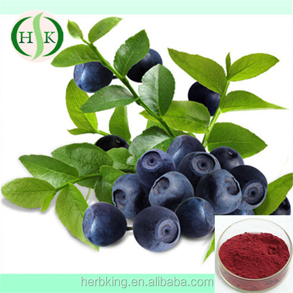 Natural Bilberry Powder Factory Outlet Bilberry Extract