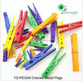 Colored Wooden Pegs