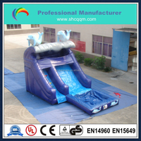 commercial mini inflatable dolphin water slide,banzai inflatable water slide