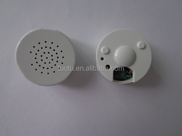 Cheapest novelty voice recorder