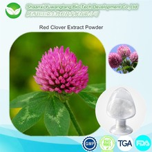 natural estrogen Red clover p.e. isoflavones,HACCP KOSHER FDA 8%-40% HPLC red clover extract power