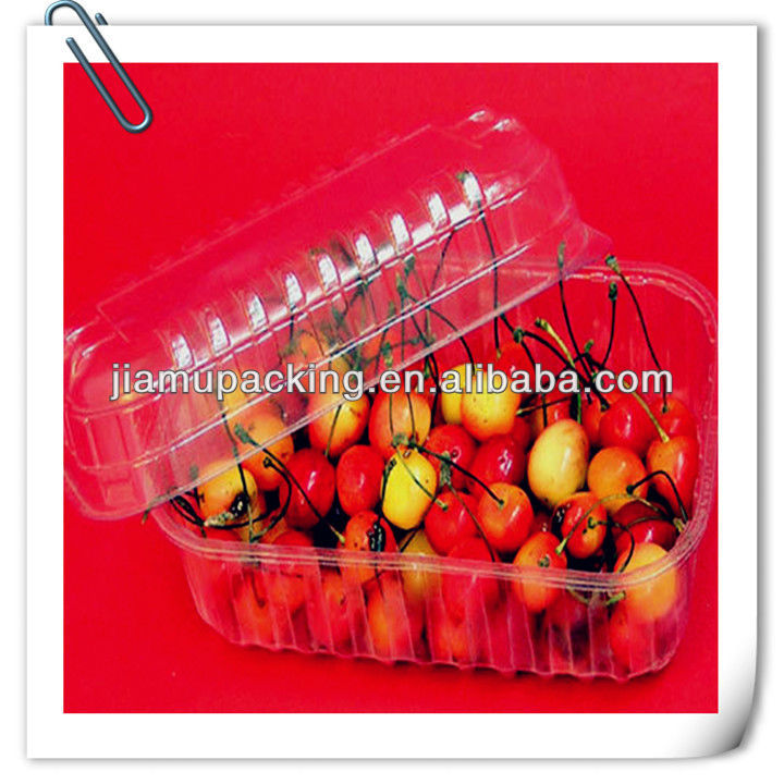 global wholesale disposable compostable fruit tray