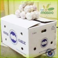 chinese nice fresh natural wholesale garlic price 2013