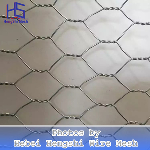 poultry farms fence/hexagonal wire netting/chicken wire mesh