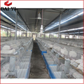 Rabbit cage factory suppliers and manufacturer