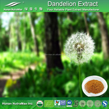 Factory Price Supply Pure Natural Dandelion Root Extract