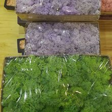 500g big package preserved moss long lasting moss produce by fresh moss wholesale from China