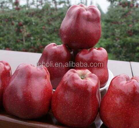 cheap red apples fresh fruit with low price
