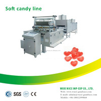Chewing gum manufacturer processing sugar making plant