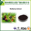 5% Anthocyanidins Natural no adding mulberry fruit extract for Women Health