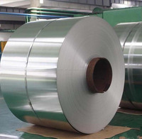 Top-Grade Quality & Service Cold Rolled Steel Coils ASTM A1008 DDS