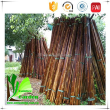 Natural Tokin Farming Bamboo Pole Cheap