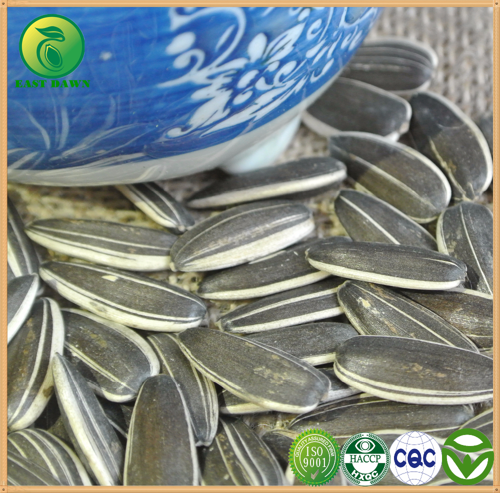 Online Shopping Hong Kong for Sunflower Seed Market Price