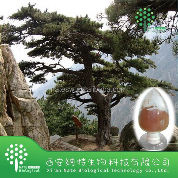 Factory supply 100% Natural Pinus pinaster extract 95% opc