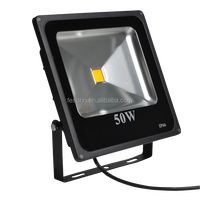 Good price IP66 light 50W stadium floodlight, led flood light 50W
