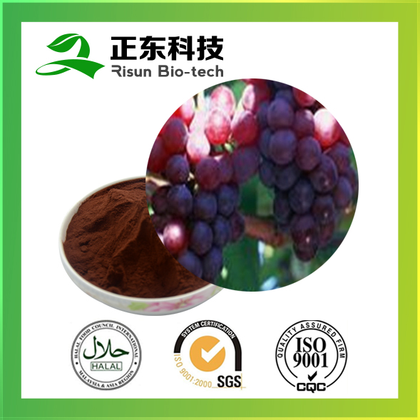 Promotional article red-brown fine powder 95% OPC Grape Seed Extract