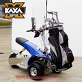 Cheap Golf Carts 1000W