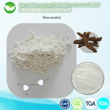 Best quality natural plant extract powder Resveratrol 98%