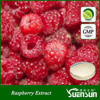 GMP factory raspberry extract powder natural raspberry ketone halal