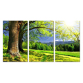 3 Pieces Modern Tree Canvas Print Sunset Scenery Landscape Painting On Canvas For Home Decor