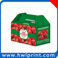 Green retail vegetable and fruit packaging boxes