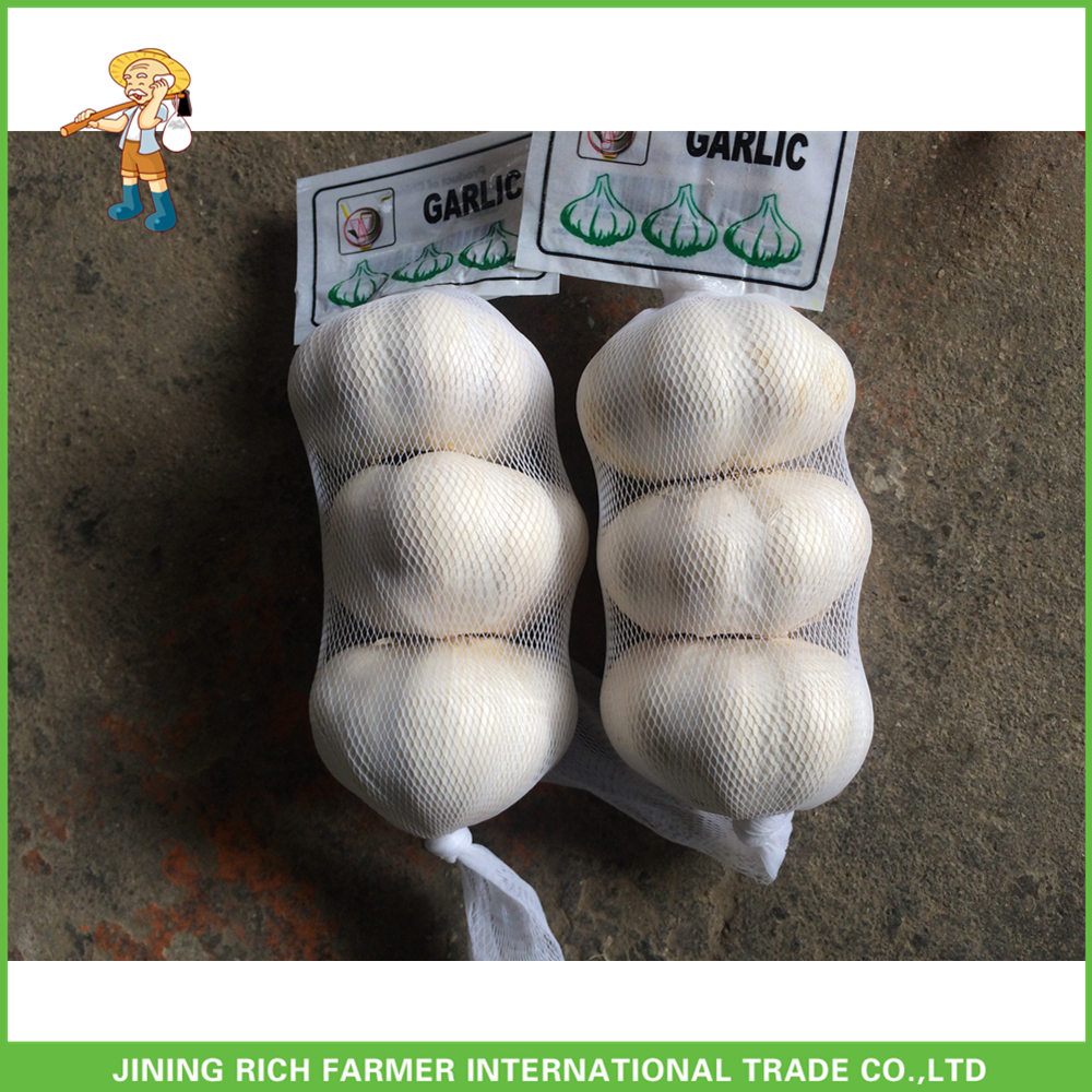 2016 crop farmer wholesale china garlic price