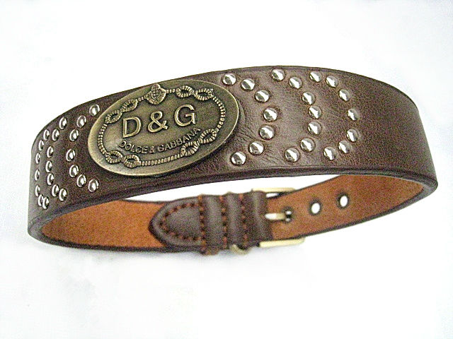 dog collar metal spikes