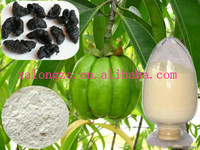 Best quality weight-lossing organic garcinia cambogia P.Ec 50% 60% HCA powder, garcinia cambogia powder suppliers