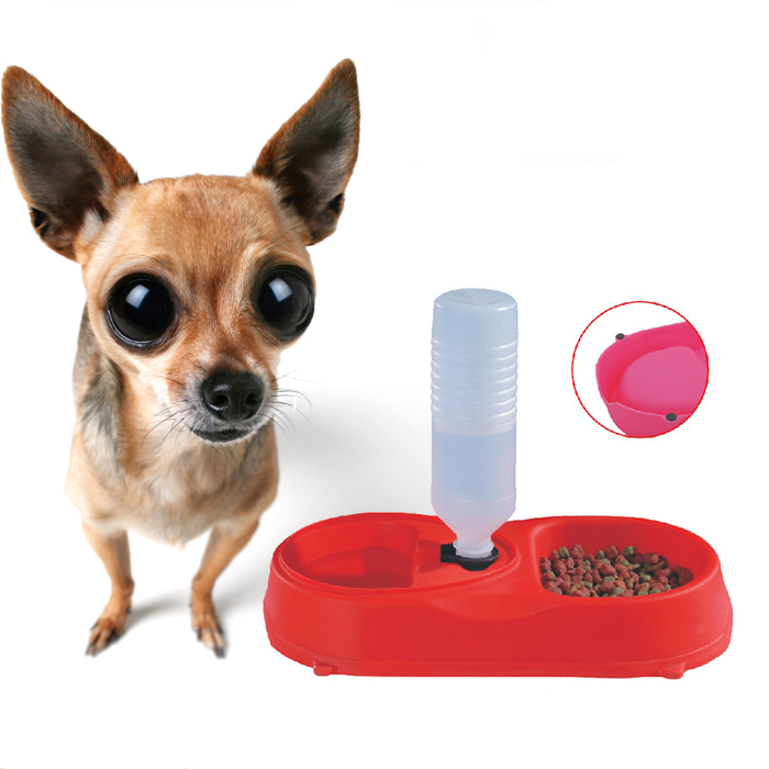 2017 Pet Water Dispenser Food Dish Bowl Dog Puppy Cat Automatic Feeder