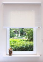 2015 hot sale modern Pull up style window roller blind