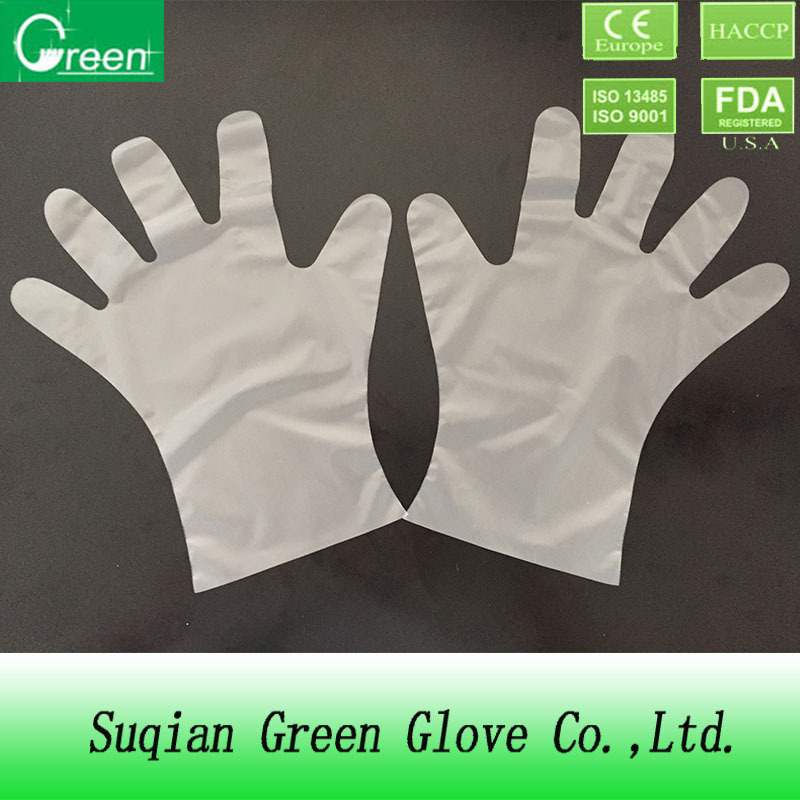 Transparent TPE Gloves/Elastic Gloves/Alternative of Vinyl Glove