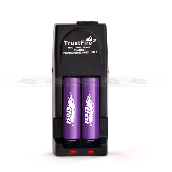 Wholesale dual usb car charger Trustfire TR-001 charger lithium iron battery charger