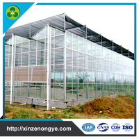 Venlo Glass Greenhouses For Agriculture