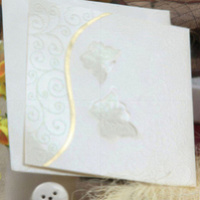 Exquisite programmable musical chips for greeting card