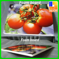 PVC Foam Board Flex Board Design and Printing