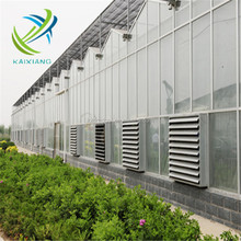 Horticultural and agricultural glass greenhouse in sale from China