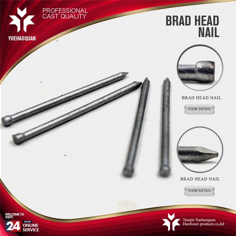 Hot selling big head stainless steel nails fastener with low price