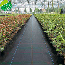 Changzhou Black Rubber & Plastic Ground Cover, Agricultural Biodegradable Woven Weed Control Mat